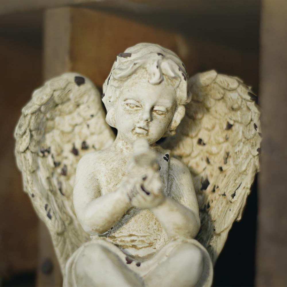 angel enjoe