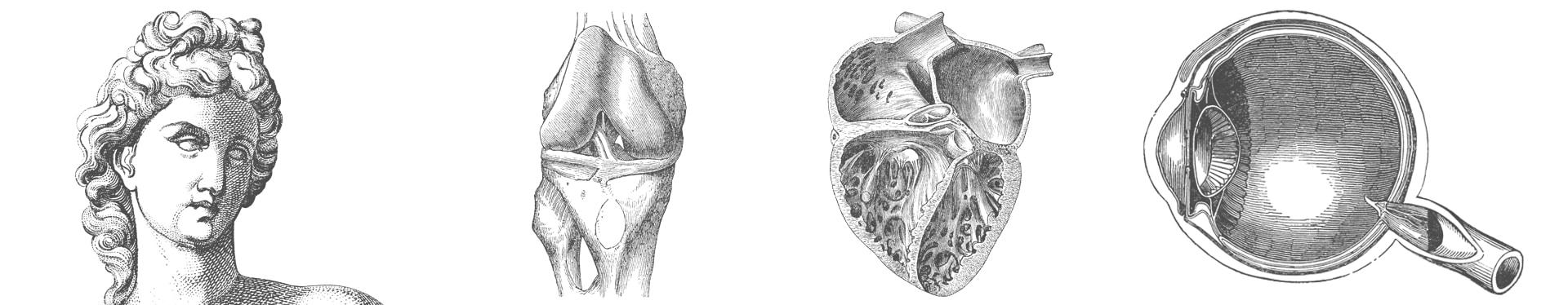 ilustraciones laboratorio i+med ideolab