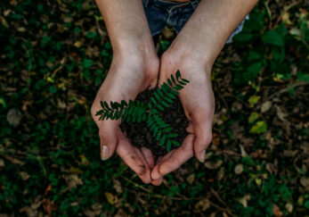 EcoBranding, qué y porqué de una nueva forma de entender el branding