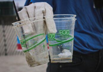 ¿Por qué lo llaman ecoBranding cuando quieren decir greenwashing?